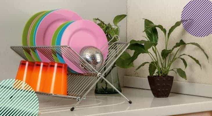 how to clean dishes after mice