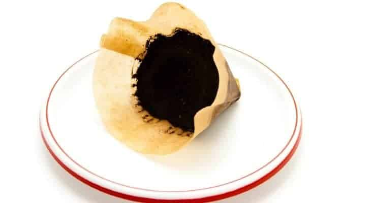 are coffee filters biodegradable